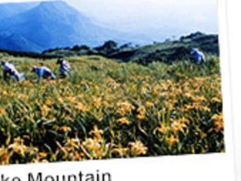 Mountain and Sea One Day Tour (Central Route)